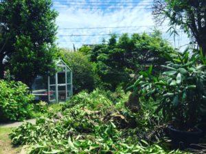 ゲストハウス楓荘を作るまで ②  夏の伐採のメモリー
